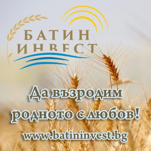 Батин Инвест